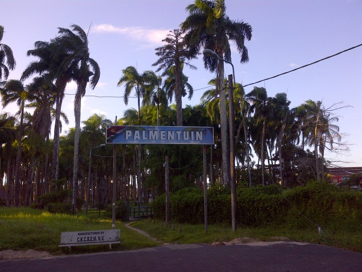 Paramaribo (33)