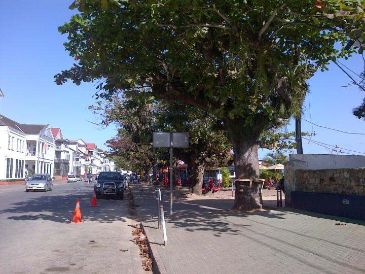 Paramaribo (74)