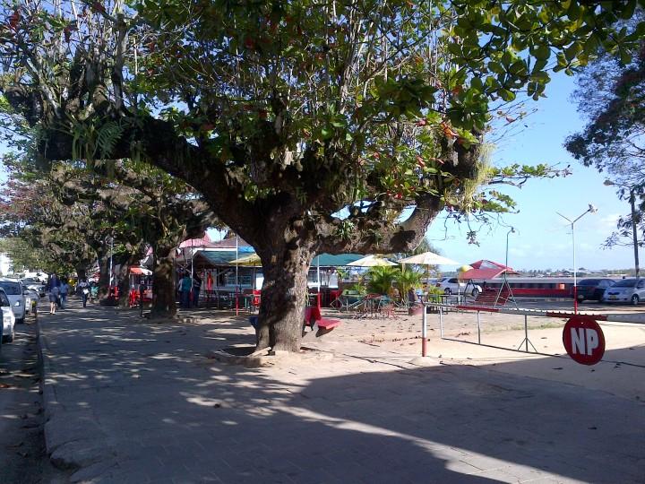 Paramaribo (75)