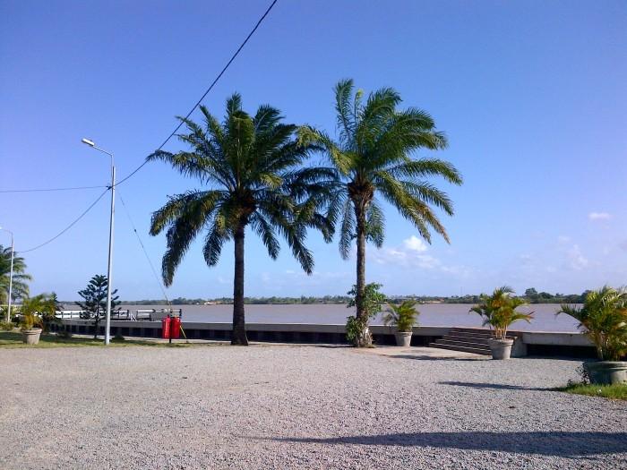 Paramaribo (83)
